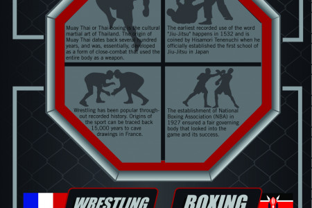 MMA: Mixed Martial Arts Infographic
