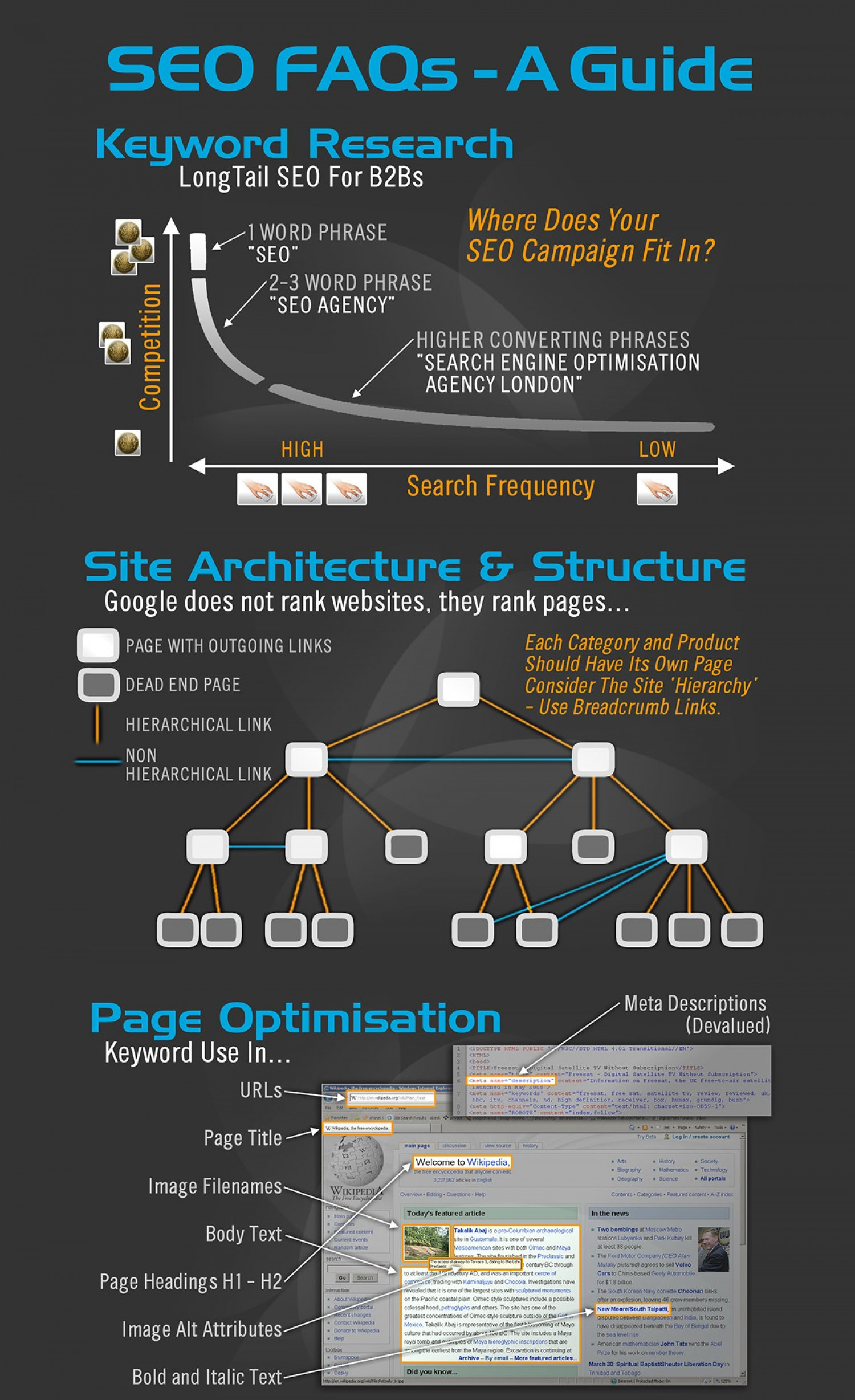 Faqs for SEO. Infographic