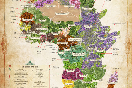 The Herb Map of Africa Infographic