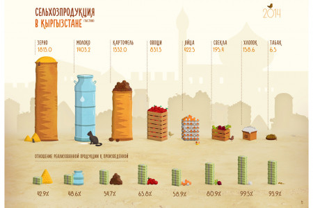 Agriculture in Kyrgyzstan Infographic