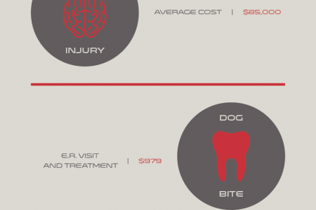 The Price of Personal Injury Infographic