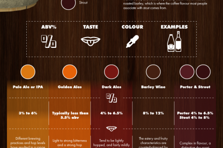 A Beer Lover's Guide To Ale and Lager Infographic
