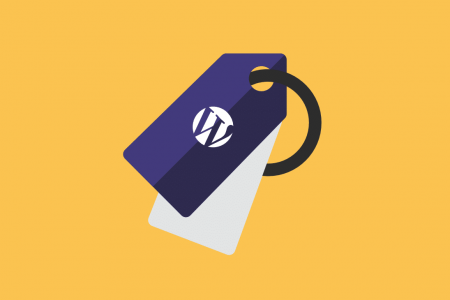 A Beginner's Guide to WordPress Tags Infographic