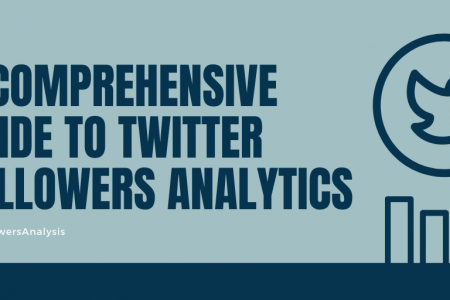 A Comprehensive Guide to Twitter Followers Analytics. Infographic