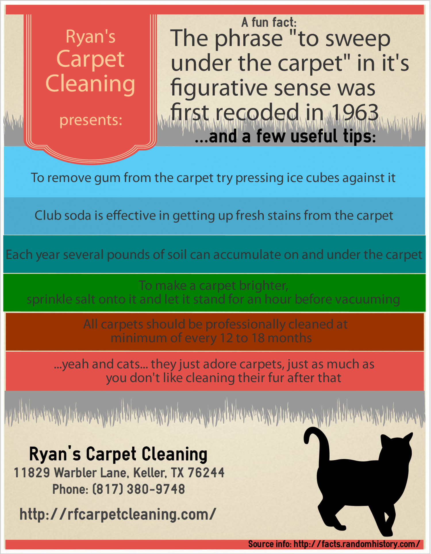 A Few Awesome Carpet Cleaning Service Tips and Facts Infographic