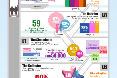 A Field Guide to China's Online Shoppers  Infographic