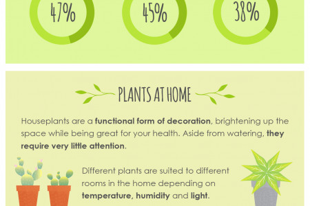 A Guide To Houseplants Infographic