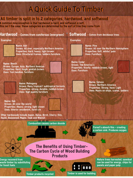 A Quick Guide to Timber Infographic