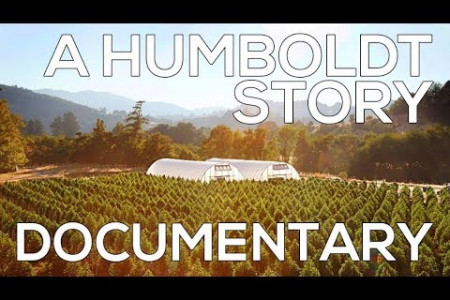 A Humboldt Story - Documentary - The Birth of the Marijuana Industry In California Infographic