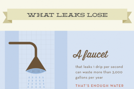 A Look at Water Usage in Your Home Infographic