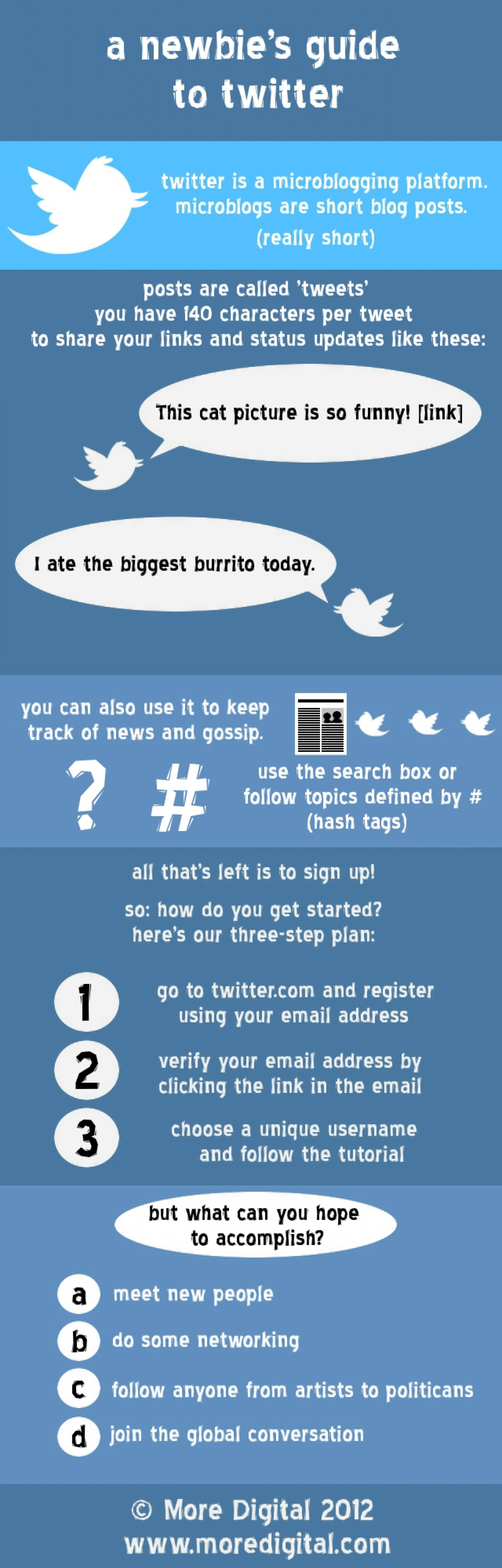 A Newbie's Guide to Twitter Infographic