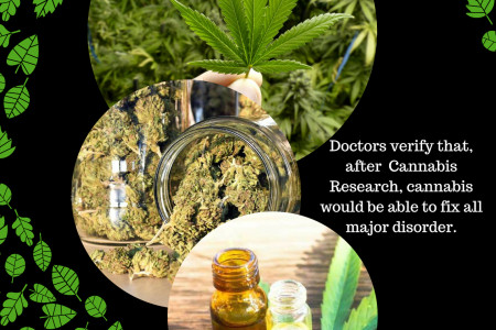 A Quality cannabis Research  Doctor with MJ BUddy Infographic