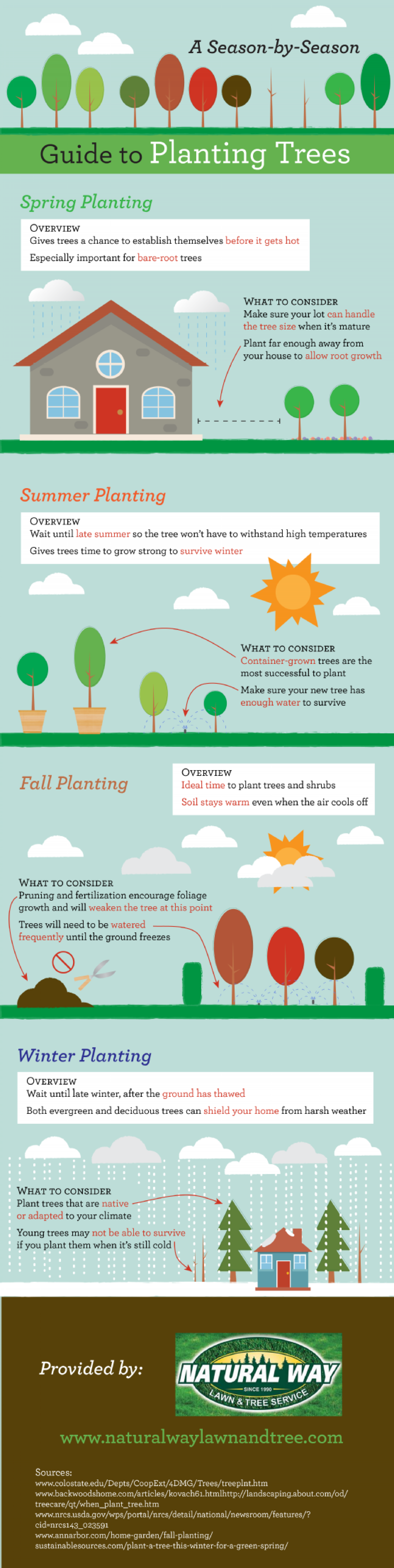 A Season-by-Season Guide to Planting Trees Infographic