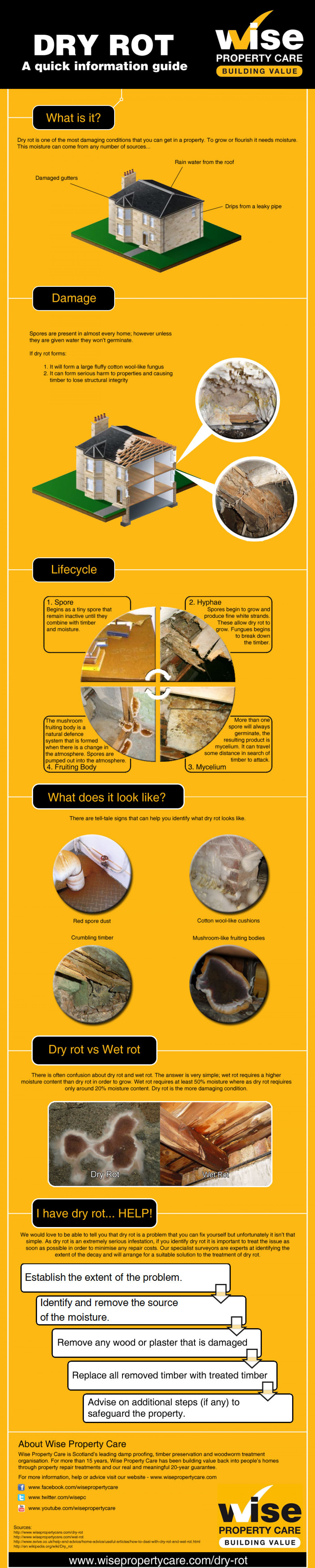 A simple guide to dry rot Infographic