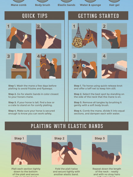 A Step-by-Step Guide to Plaiting a Mane Infographic