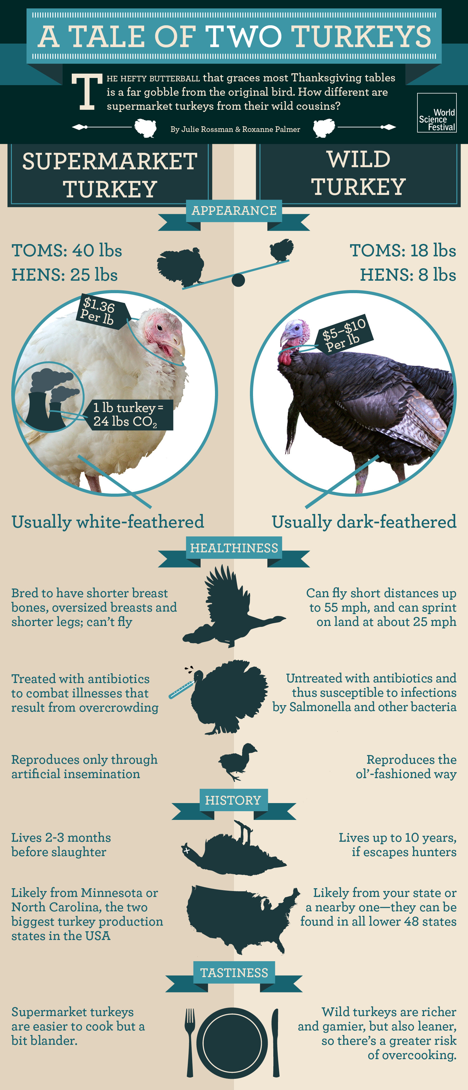 A Tale of Two Turkeys Infographic