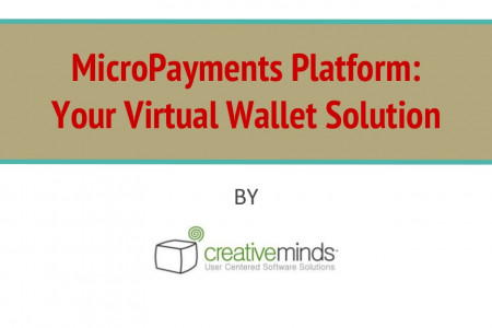 A Virtual Wallet Solution for WordPress Infographic