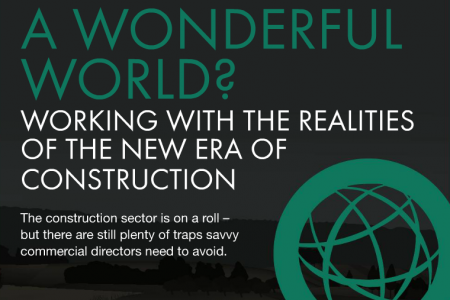 A Wonderful World? Working with the Realities of the New Era of Construction  Infographic