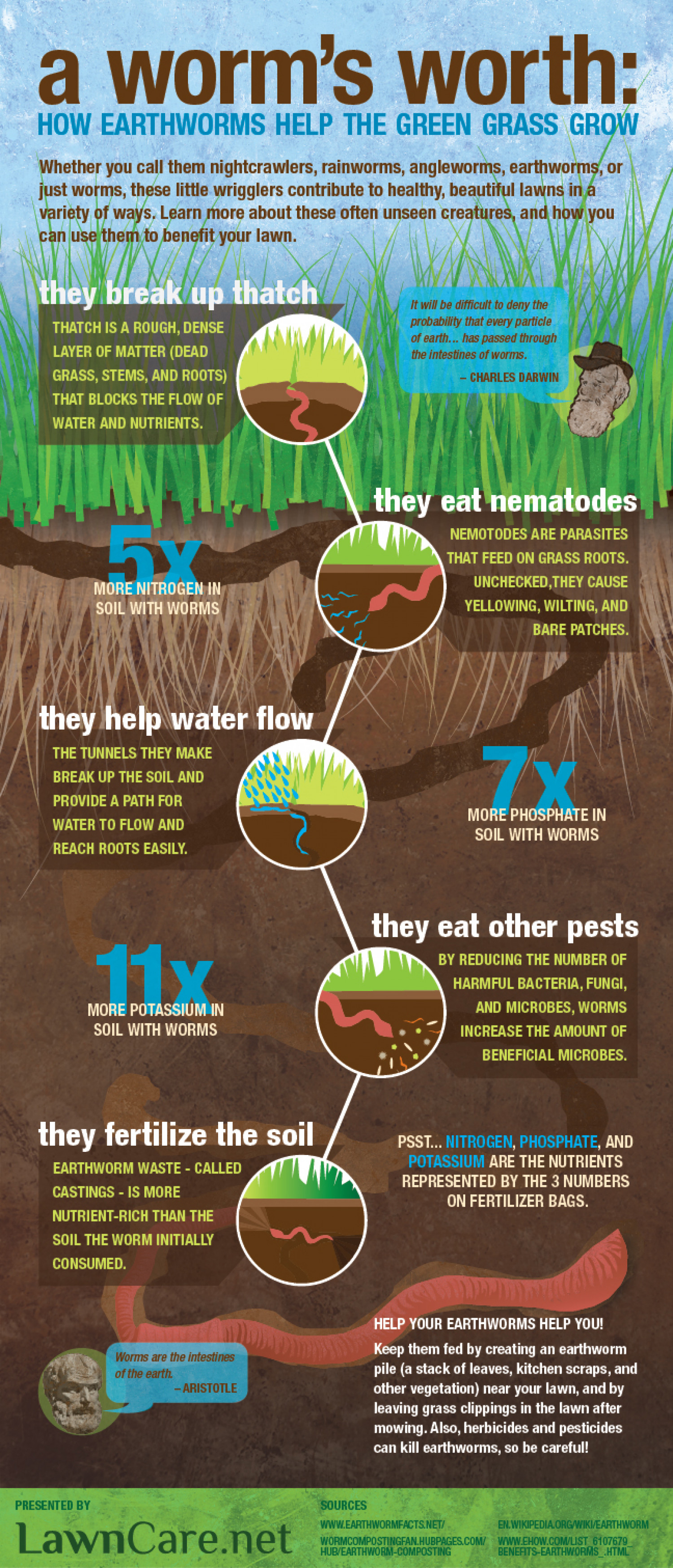 A Worm's Worth: How Earthworms Help the Green Grass Grow Infographic