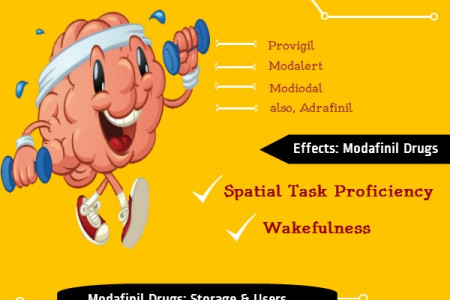 About Modafinil Infographic