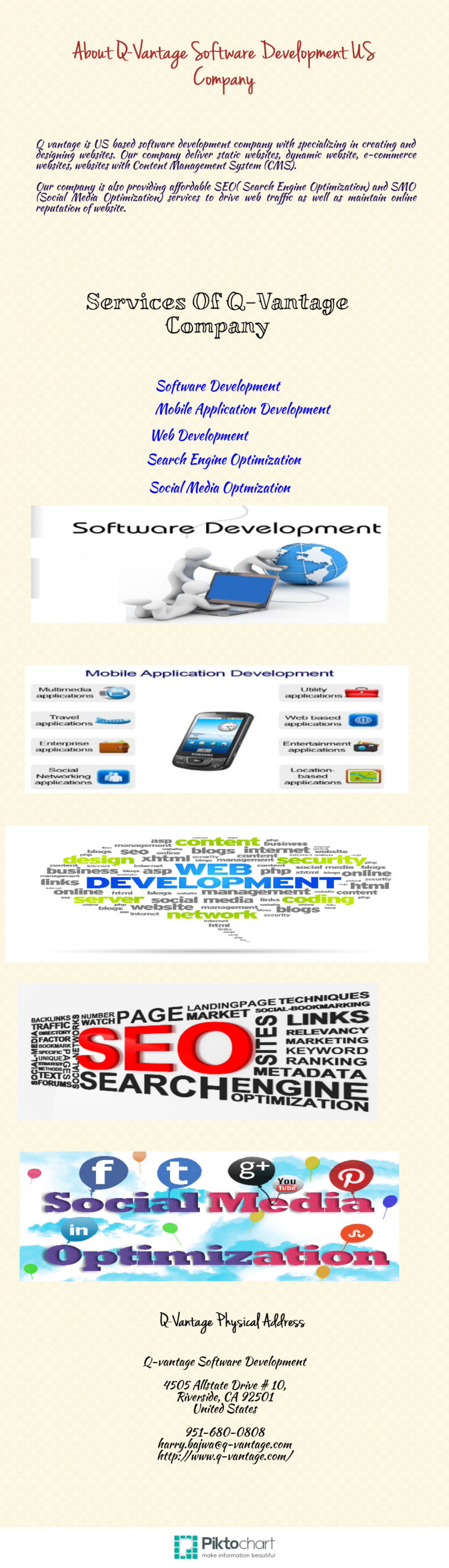 About Q-Vantage Software Development US Company Infographic