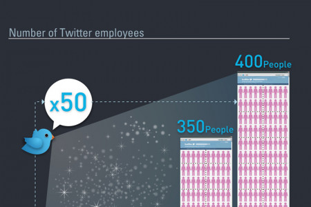 About Twitter Infographic