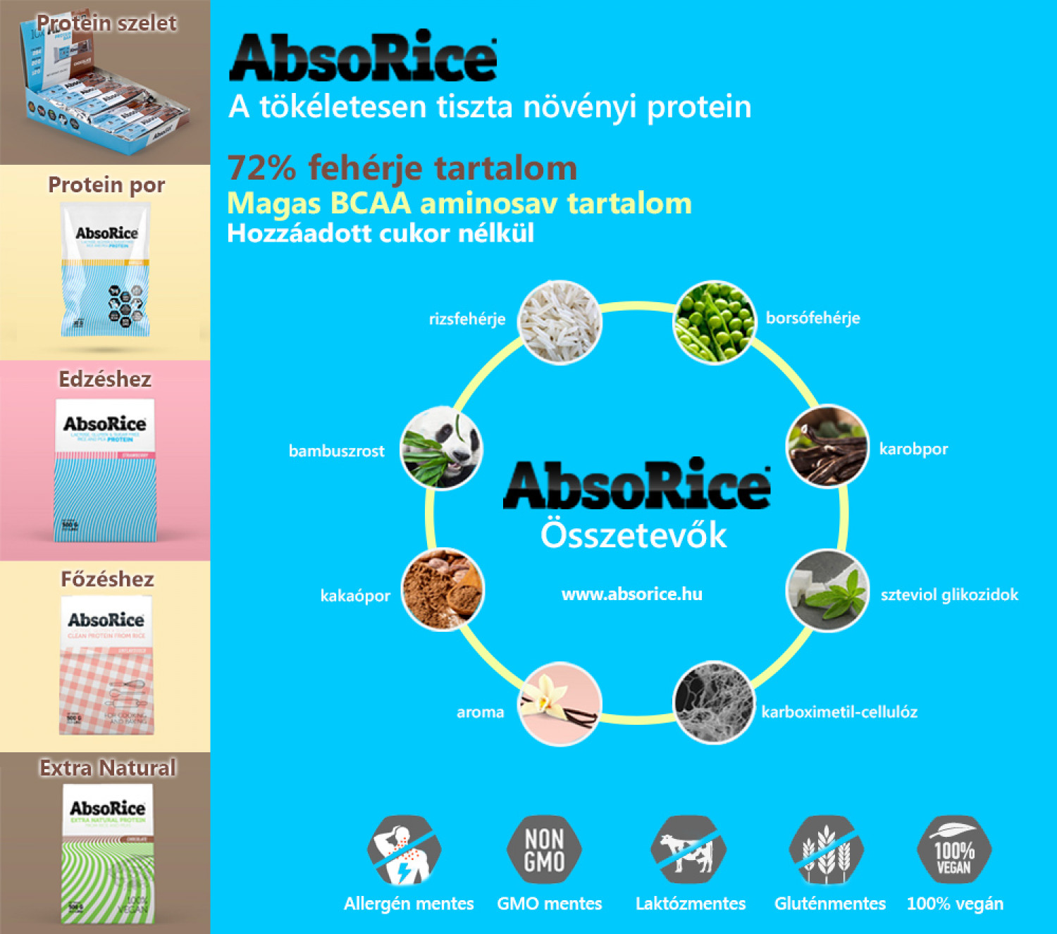 AbsoRice  Infographic