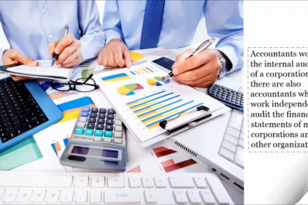 Accountants and Auditors Contractors in UAE Infographic