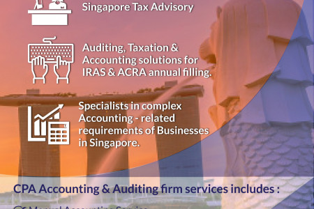 Accounting Services in Singapore Infographic