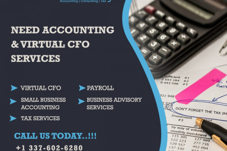 Accounting Services USA - BlueSky Accounting Infographic
