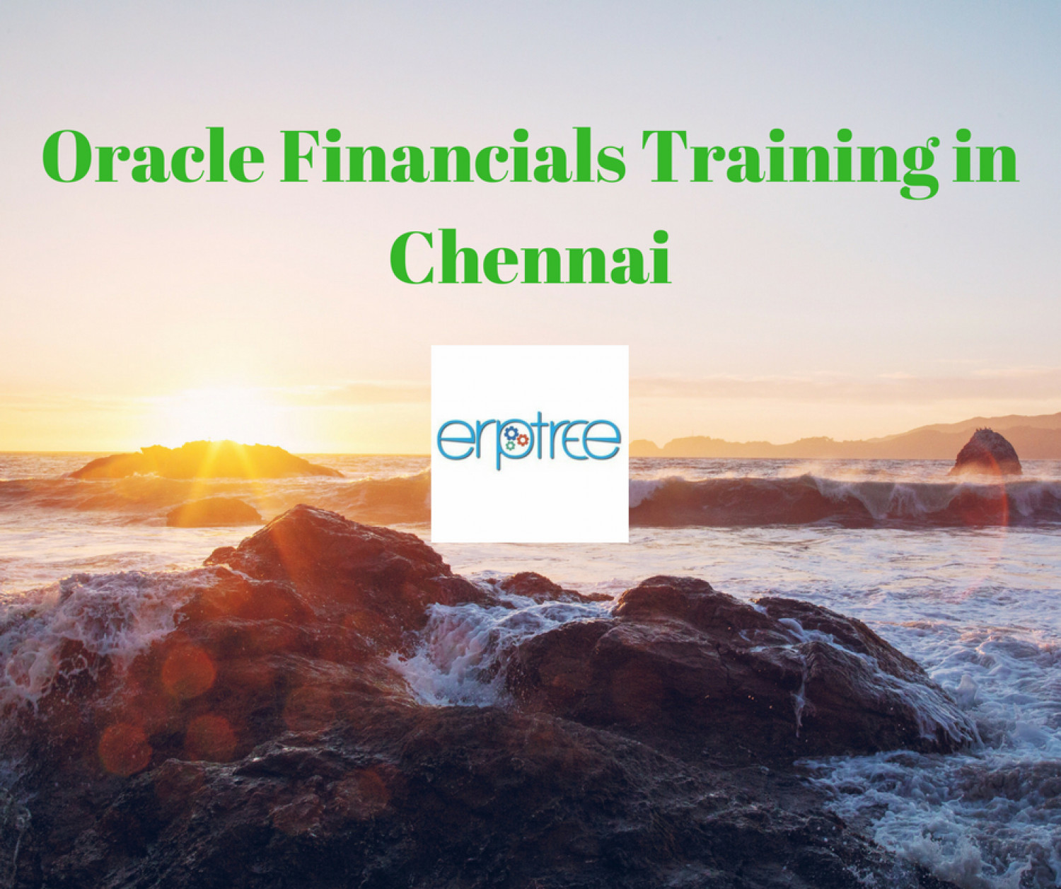 Achieve Your Goal In Oracle Financials Training in Chennai | Attend Free Demo Today Infographic