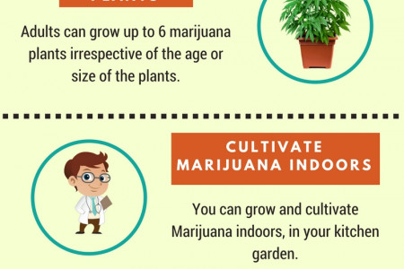 Acquiring Medical Marijuana Card in Los Angeles Infographic