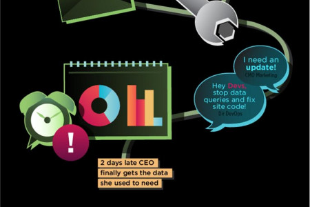 Ad Hoc Data Requests Infographic