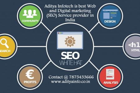 Aditya Infotech is the best Web and Digital Marketing Service provider Infographic