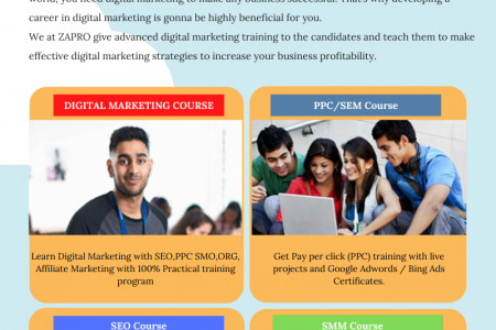 Advanced Digital Marketing Course in Zirakpur Infographic