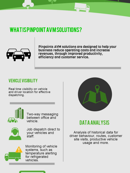 Advanced Vehicle Management Solutions Infographic