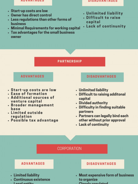 ADVANTAGES AND DISADVANTAGES OF BUSINESS ORGANIZATION Infographic
