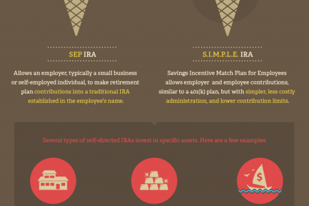 Advantages of a Self Directed IRA Infographic