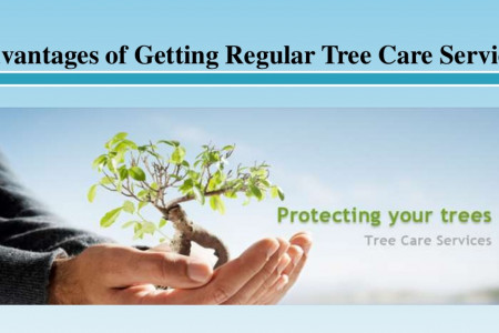 Advantages of Getting Regular Tree Care Services  Infographic