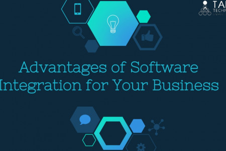 Advantages of Software Integration for Your Business  Infographic