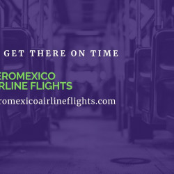Aeromexico Airlines Enlightens your way to save bucks on air tickets  | Visual.ly