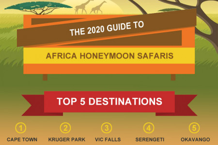 Africa Honeymoon Safari Guide 2020 Infographic