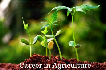 Agricultural Courses in India Infographic
