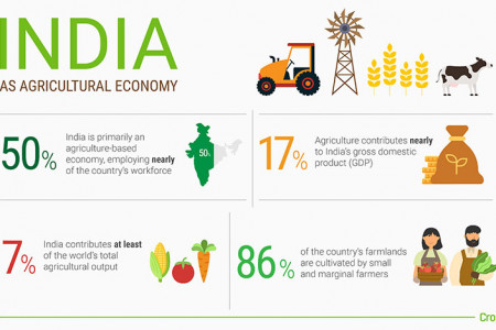 Agricultural Economy - India Infographic