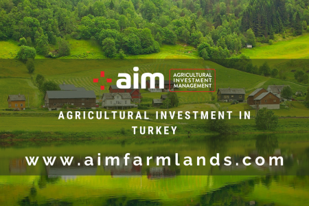 Agricultural Investments for a Long Term Profitable Investment Infographic