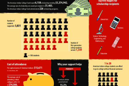 AICF 2012-2013 Annual Report Infographic