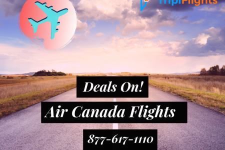 Air Canada last minute deals - Tripiflights - Hurry Up! Infographic