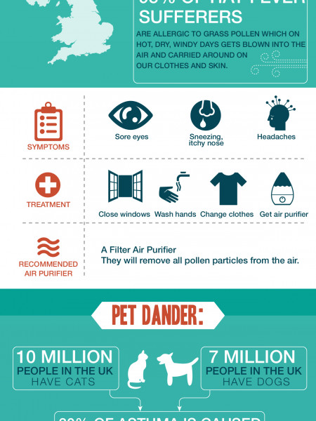 Air Filters  Infographic