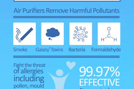Air Purifiers Infographic