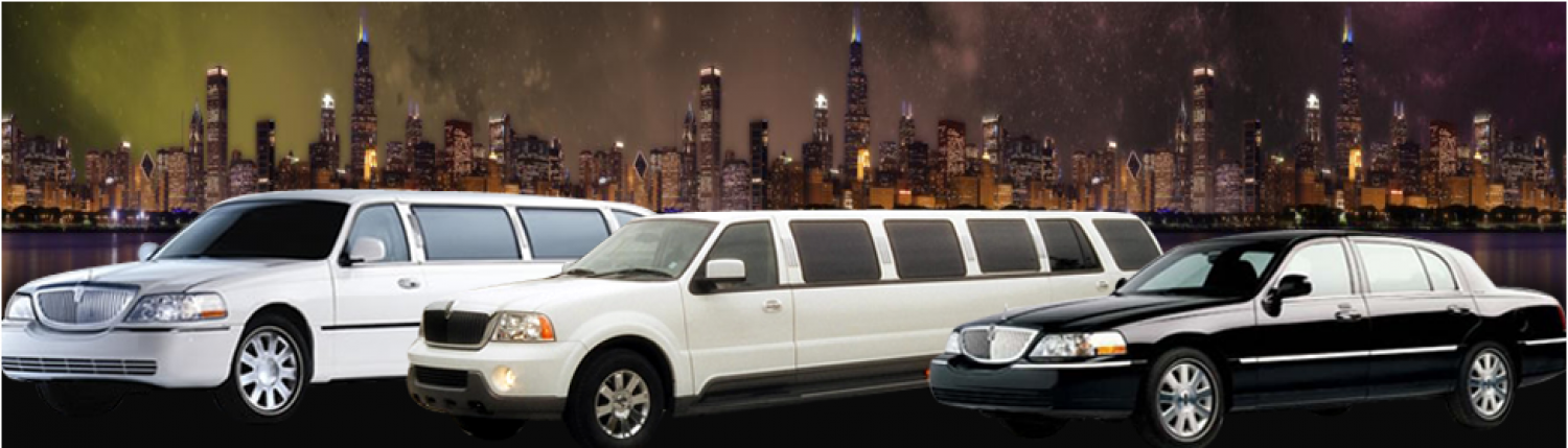 Airport Limousine Services Infographic